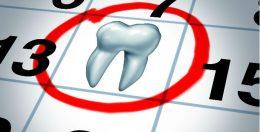Regular Dentist